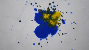 Drops of paint of different colors dripping on white paper stock footage