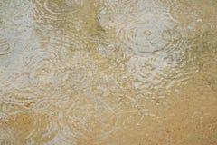 Cold rain Royalty Free Stock Photos