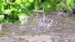 Drops of rain fall on the granit stone in the garden. Drops of water drip onto wet stone. Loop, dynamic scene, toned video stock footage
