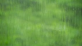 Drops of rain flow down the surface of the glass against the juicy greens. Rain drops flow down the surface of the glass against the background of juicy greens stock footage