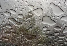 Drops of rain Stock Photo