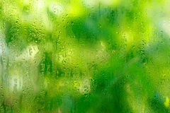 Drops of rain on a glass. On a green background vector illustration