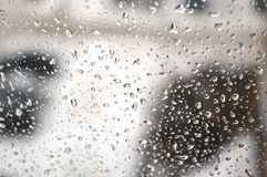 Drops of rain on the window Stock Image