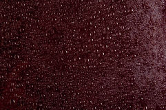 Drops on Red Stock Images