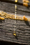Drops Of Resin On Wooden Wall Stock Photography