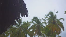 Drops of tropical rain falling from the bungalows. Drops of tropical rain falling from the bungalow on the background of palm trees stock video footage