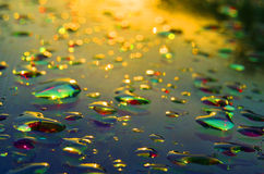 Drops of water Stock Photo