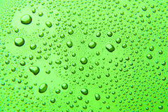 Drops of water on a color background. Green stock photography