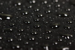 Drops of water on a dark background. Royalty Free Stock Image