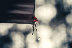 Drops of water. From a drainpipe Royalty Free Stock Photography