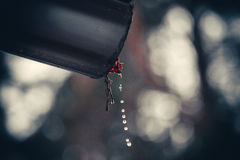 Drops of water. From a drainpipe Royalty Free Stock Photo