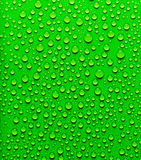 Drops of water. Royalty Free Stock Photo