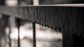 Drops of water on a fence Royalty Free Stock Photo