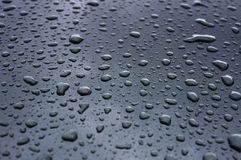 Drops of water. Many drops of water in the gray Stock Image