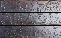Drops of water. After rain. Royalty Free Stock Image