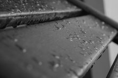 Drops of water on the wooden boards after rain Royalty Free Stock Image