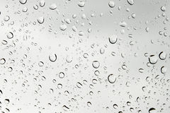 Drops on a window Stock Images