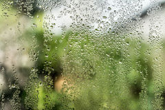 Drops on window Stock Images