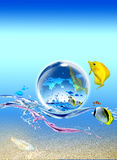 Drops of woter, earth, and sea with fish Stock Photo
