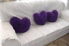 Drottning av purpurfärgade hjärtor i din vardagsrum! royaltyfria bilder