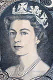 Drottning Elisabet Royaltyfri Fotografi