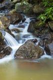 Drottning Mary Falls Fotografering för Bildbyråer
