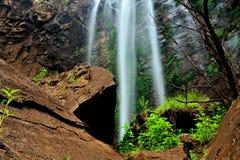 Drottning Mary Falls av Queensland Royaltyfria Bilder