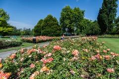 Drottning Mary Garden London England Arkivbilder