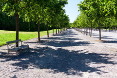 Drottningholm Palace in Stockholm,Linden Alley, re Royalty Free Stock Image