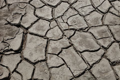 Drought. Parched and cracked mud during drought Royalty Free Stock Photography