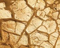 Drought Stock Photo
