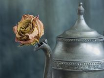 Drought. Withering flower in an ancient Greek vessel Stock Photo