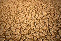 Free Drought Stock Images - 17929644