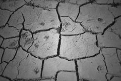Drought. The earth's surface, which has dried up Royalty Free Stock Photo