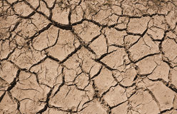 Drought. Cracked earth a sympton of Drought from poor rainfall in the summer Stock Photo