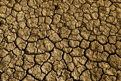Drought. Photo of cracked and dried soil under the Sun stock photos