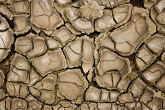 Drought. Dry mud in a desert land Stock Images