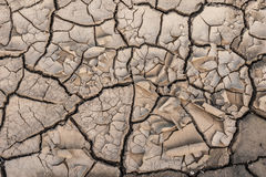 Drought Royalty Free Stock Images