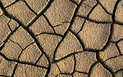 Drought. Cracked and dried ground Texture Stock Photos