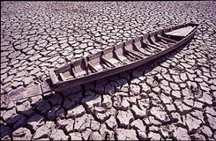 Drought. Texture of dry land in countryside Royalty Free Stock Photography