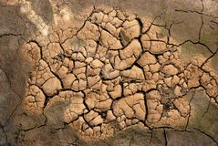 Drought. Close-up of the drought brown ground royalty free stock image