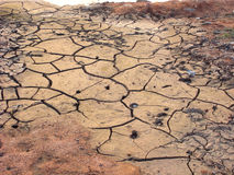 Drought. Mud detail showing different stages of drying Stock Photo