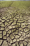 Drought Royalty Free Stock Photos