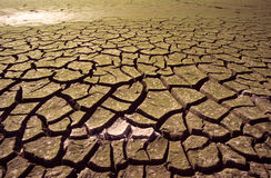 Free Drought Stock Images - 904964