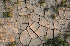Drought agricultural land. Royalty Free Stock Image