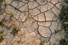 Drought agricultural land. Stock Photography