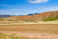 Drought in Australia Royalty Free Stock Photography