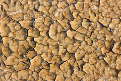 Drought breaks ground Royalty Free Stock Photo