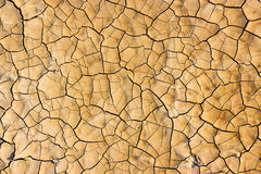 Drought breaks ground Royalty Free Stock Images