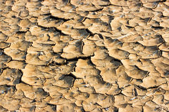Drought breaks ground Royalty Free Stock Image